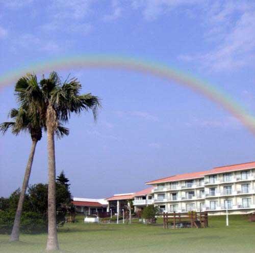 奄美大島リゾートホテル コーラルパームス <奄美大島>