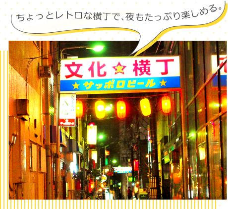 レトロな街 文化横丁/壱弐参(いろは)横丁