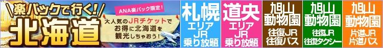 ANA楽パック×JR北海道でお得に旅行☆