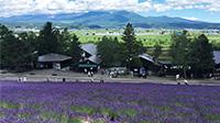 北海道おすすめ3日間周遊モデルルート