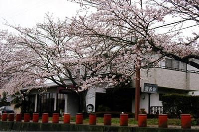 ペンション紫香楽◆楽天トラベル