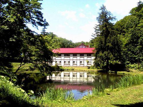 鯉川温泉旅館◆楽天トラベル