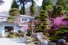 美女谷温泉 の写真