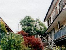 セーラー荘◆楽天トラベル