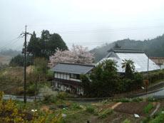 里山民宿 新屋◆楽天トラベル