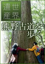 世界遺産熊野古道を歩く