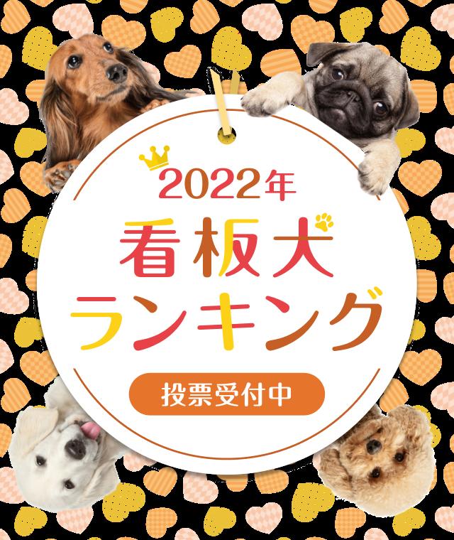 2020年看板犬ランキング
