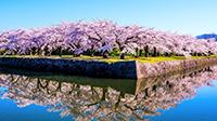 春旅北海道キャンペーン